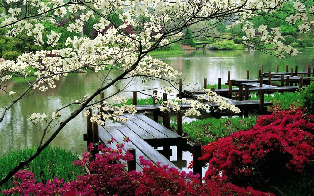 8269-japanese-garden-1920x1200-nature-wallpaper
